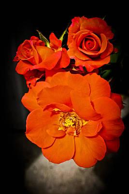 Photograph - Orange Rose Trio by Joann Copeland-Paul