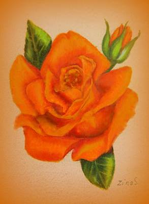 Floral Drawing - Orange Rose by Zina Stromberg