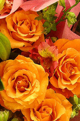 Roses Royalty-Free and Rights-Managed Images - Orange Roses by Amy Vangsgard