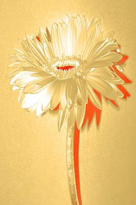 Bloody Mary Digital Art - Orange Slice Zinnia by Sherry Allen