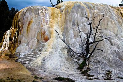 Orange Spring Mound 1 Yellowstone Np Original