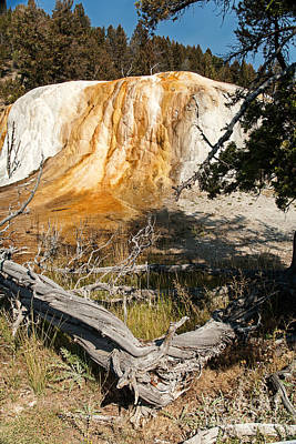 Photograph - Orange Spring Mound At Mammoth Hot Springs by Fred Stearns