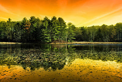 Photograph - Orange Sunrise Reflection Landscape by Christina Rollo