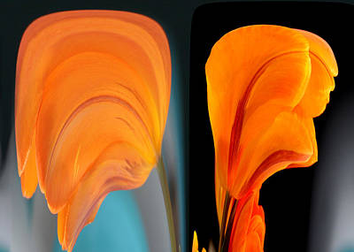 Photograph - Orange Tulip Fellows by Jim Baker