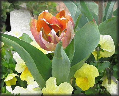 Photograph - Orange Tulip by Kathie Chicoine
