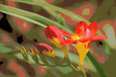 Orange Yellow Freesia 1 Art Print by Sheri McLeroy