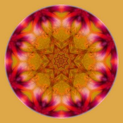 Photograph - Orange Yellow Mandala by Beth Sawickie