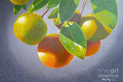 Blueberry Painting - Oranges by Carey Chen