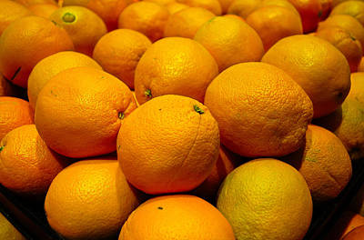 Photograph - Oranges by Robert Meyers-Lussier