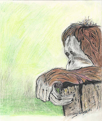 Orangutan Drawing - Orangutan Love by Deborah Vicino