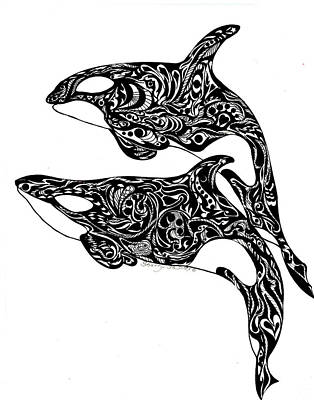 Orca Drawing - Orca Dance by Sherry Shipley