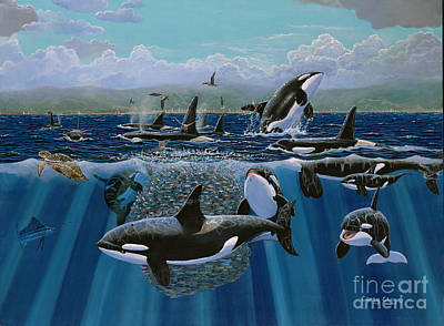 Humpback Whale Painting - Orca Play Re009 by Carey Chen