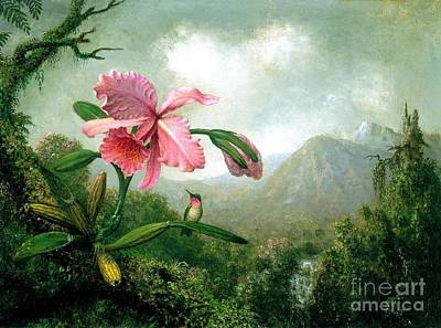 Painting - Orchid And Hummingbird by Pg Reproductions