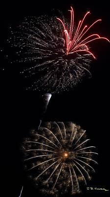 Photograph - Orchid And The Sprinkled Doughnut Mum - Fireworks At St Albans Bay by R B Harper