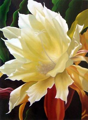 Orchid Cactus Flower  Original by Maia Vasilieva