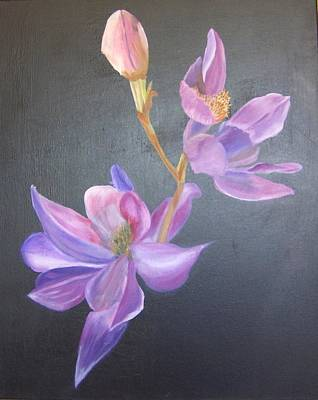 Orchid Art Print by Catherine Swerediuk