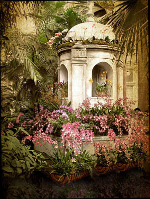 Orchid Exhibition Art Print