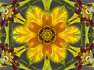 Digital Art - Orchid Flower Star Mandala by Diane Lynn Hix