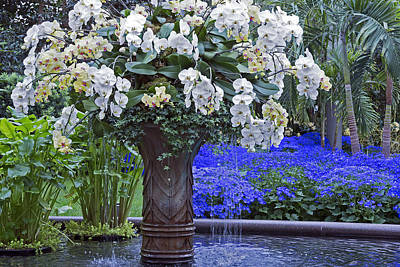 Photograph - Orchid Fountain by Jennifer Nelson