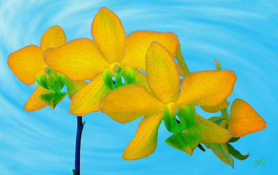 Photograph - Orchid In Yellow by Ben and Raisa Gertsberg
