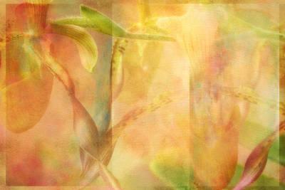 Door Locks And Handles - Orchid Mist by Linda Dunn