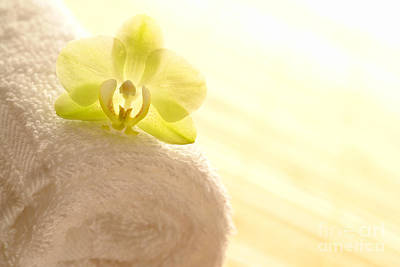 Photograph - Orchid On Towel by Olivier Le Queinec