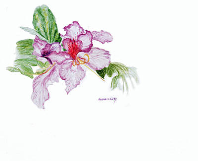 Art Print featuring the painting Orchid by Rachel Lowry