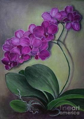 Orchid Art Print by Randy Burns