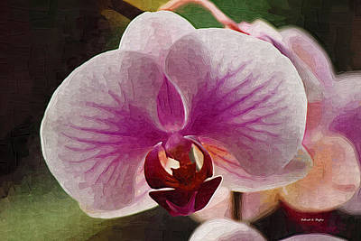 Photograph - Orchid Veins by Deborah Hughes