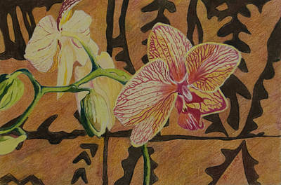 Drawing - Orchid With Tapa by Terry Holliday