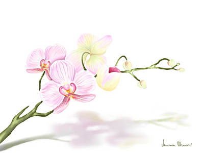 Floral Digital Art Painting - Orchidea by Veronica Minozzi