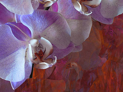 Photograph - Orchidelia 5 by Lynda Lehmann