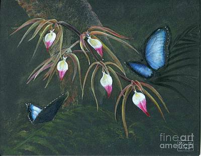 Painting - Orchids And Butterflies by Penrith Goff