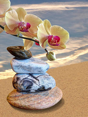 Orchids And Pebbles On Sand Art Print by Gill Billington
