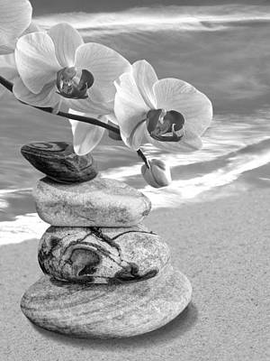 Photograph - Orchids And Pebbles On The Sand In Black And White by Gill Billington