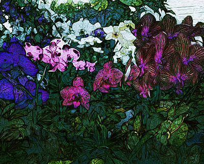 Orchids At Lowes Art Print by Joy Jolley
