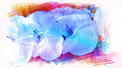 Painting - Orchids In Bright Blue by Xueyin Chen