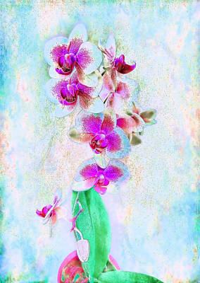 Photograph - Orchids In The Abstract by Louise Kumpf