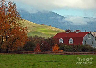 Photograph - Oregon Barn by Chuck Flewelling