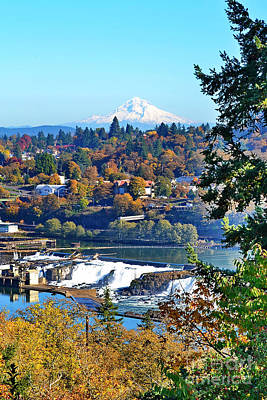 Photograph - Oregon City  Fall by Ansel Price