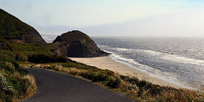Photograph - Oregon Coast And Fog by Michelle Calkins