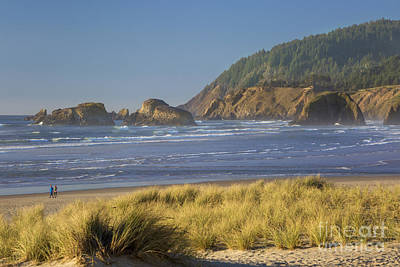 Photograph - Oregon Coast by Brian Jannsen