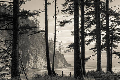 Photograph - Oregon Coast by Scott Rackers