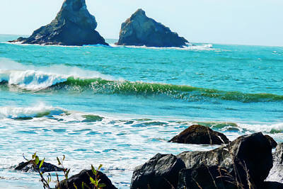 Photograph - Oregon Coastal Eye Candy by Robert Roland