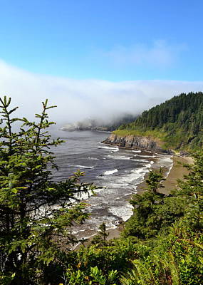 Photograph - Oregon Coastline by Michelle Calkins