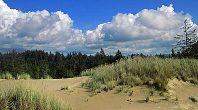 Photograph - Oregon Dunes 1 by Lara Ellis