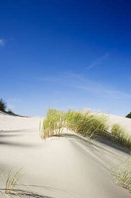 Oregon Dunes Art Print by Charmian Vistaunet