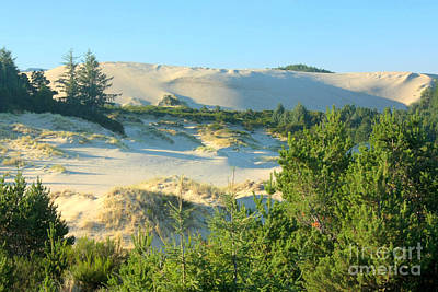 Photograph - Oregon Dunes by Frank Townsley
