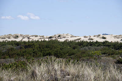 Photograph - Oregon Dunes National Recreation Area - 0003 by S and S Photo