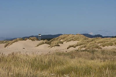 Photograph - Oregon Dunes National Recreation Area - 0010 by S and S Photo